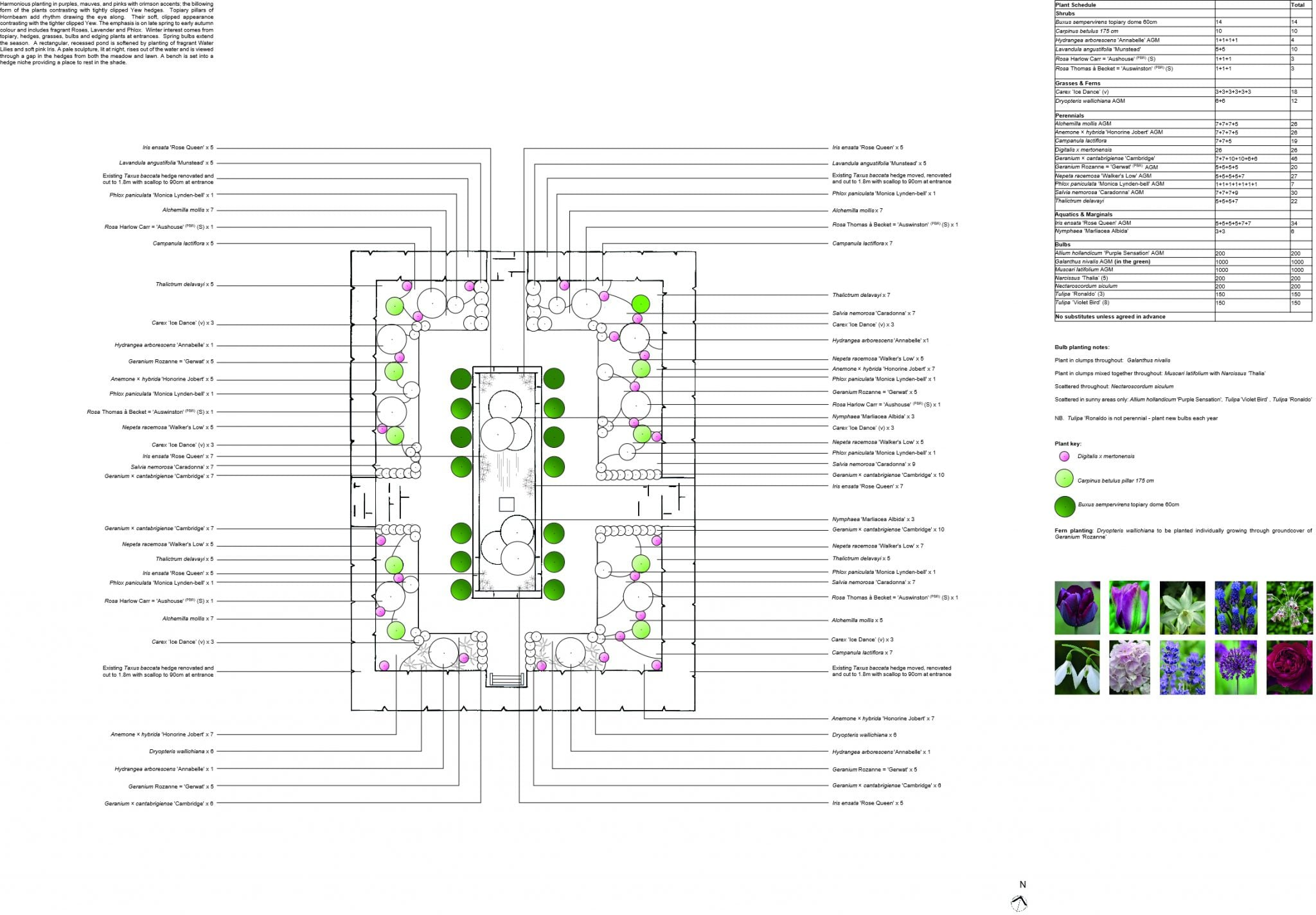 Planting Plan anon for website image